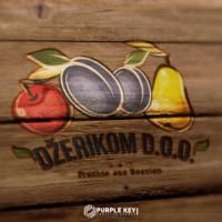 dzerikom logo design